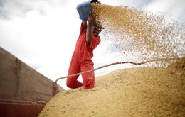 China accounted for 77% of soybean shipments from Brazil for August, Secex said.