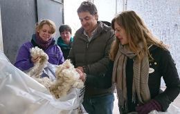 Examining wool at SUL - the Uruguayan Secretariat Wool research facility (Pic. F Peck)