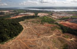 Brazil's leading meat export industry group and other agribusiness associations joined NGOs to call for an end to deforestation on public lands