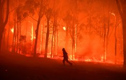 The fires, which covered parts of South-east Asia with thick clouds of ash and smoke, may have released the equivalent of 709 million tons of carbon dioxide