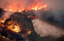 Almost five million hectares (50,000 square kilometers) have been razed across the state since late September, according to the NSW Rural Fire Service commissioner