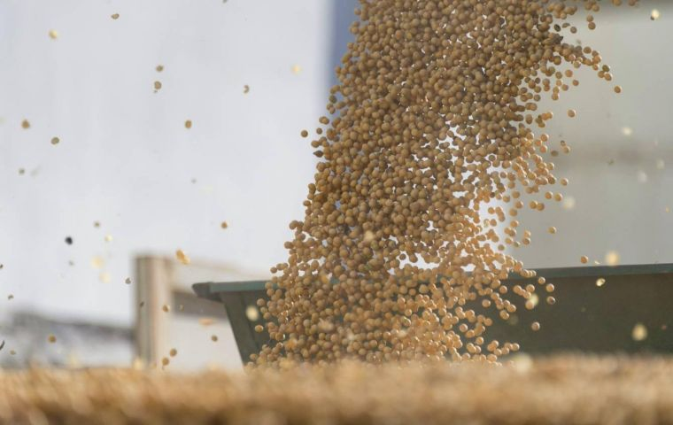 Brazil could export 9 million tons of soybeans in February, up 80% year on year, on good harvest pace and currency depreciation, Conab said last week.