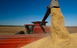 Rains at the end of February in Brazil delayed harvesting and subsequent exports, leading to record low stocks of soy and soy meal in China.
