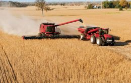 """2019 was a strong year for the grain harvest in Brazil, which increased revenue and volumes traded,"" Paulo Sousa, chief executive of Brazil's Cargill said"