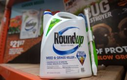 Regulators worldwide have determined glyphosate to be safe with the exception of the World Health Organization's cancer research arm