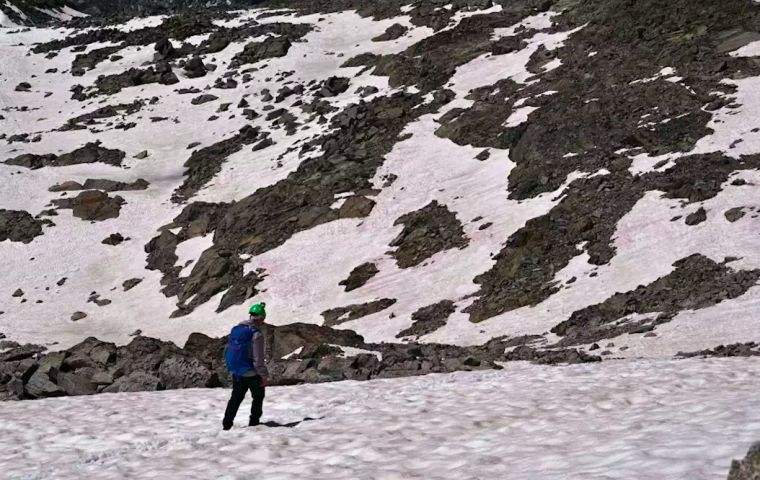 Italy's National Research Council said the pink snow observed on parts of the Presena glacier is likely caused by the same plant found in Greenland.