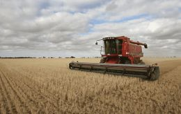Wheat production forecasts have been raised for India and the Russian Federation, more than offsetting a cutback to the EU and the UK expected outputs.