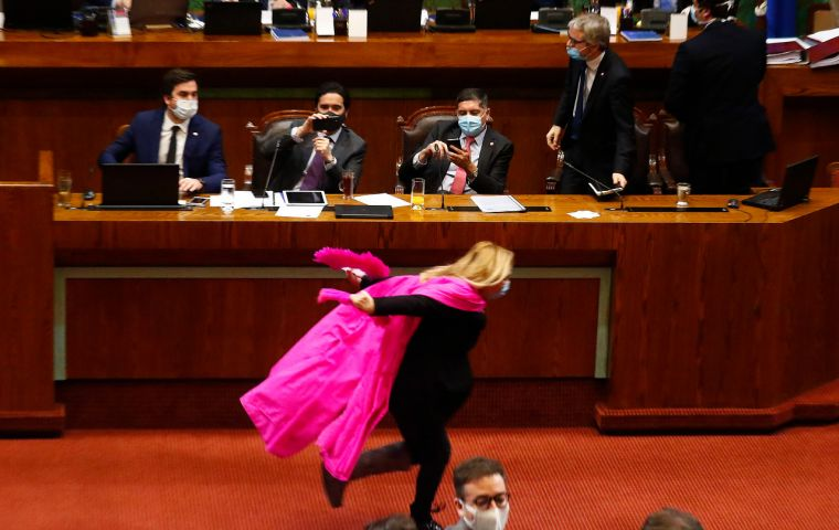 Wearing a face mask and a pink shawl streaming behind her, Ms Pamela Jiles sprinted past bemused senior ministers in president Piñera's administration