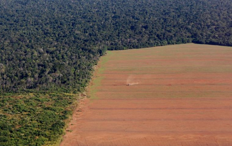 "There are only a few ""rotten apples"" in the meat and soy supply chains, with only 2% of farms causing 62% of illegal deforestation in the analyzed area"