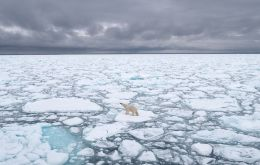 Historically the Arctic Ocean would freeze right out to its edges, the northern coasts of Canada, Greenland, Russia and Alaska) each winter, 14-million square km