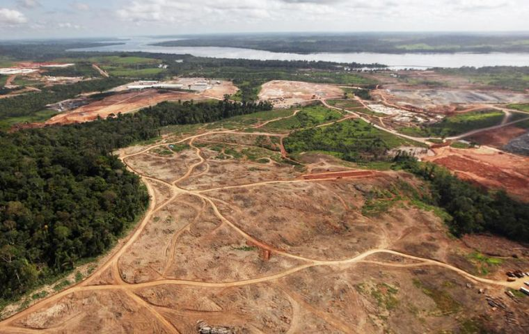 Deforestation in Brazil's Amazon rainforest surged to a 12-year high in 2020, according to official government data, with destruction soaring