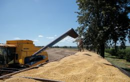 The strong demand in the domestic market and the record export volumes have led Brazil to renew maximums in soy imports also this year
