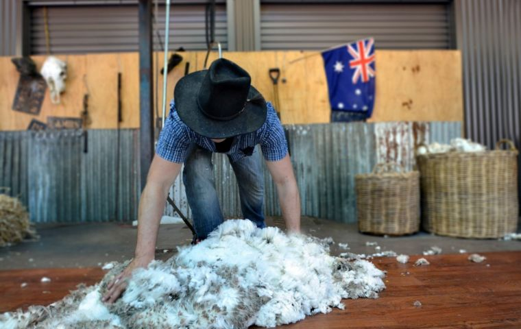 According to the statement, the 2021 quota for New Zealand wool and wool top is 36,936 tons and 665 tons, while the quota for Australian wool is 38,288 tons.