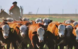 "The goal of the measure is to ""improve the monitoring of beef exports and the supply to the domestic market,"" the government said in a statement."